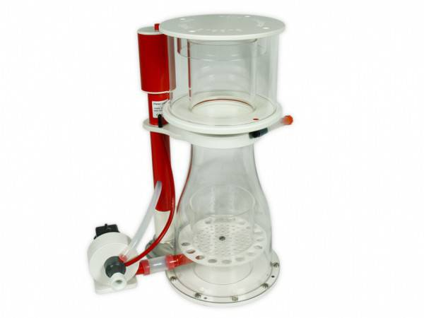 Royal Exclusiv Bubble King Double-Cone 200 (1000)