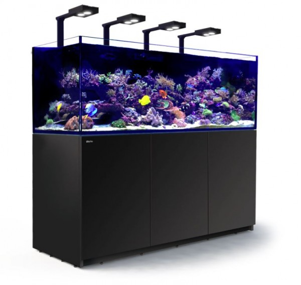 Neu red sea reefer deluxe im meerwasser onlineshop shop for Meerwasser shop