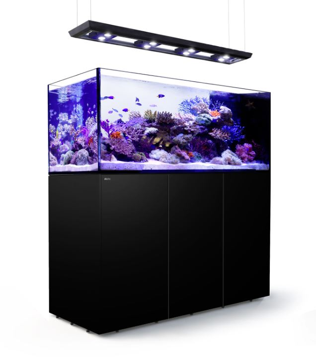 meerwasseraquarium kaufen aquarium f r meerwasser online. Black Bedroom Furniture Sets. Home Design Ideas