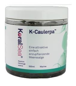 KoralSea K-Caulerpa 500 ml