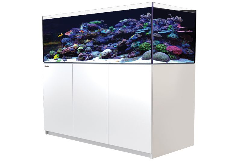 Red sea aquarien technik meerwasser hardware for Meerwasser shop