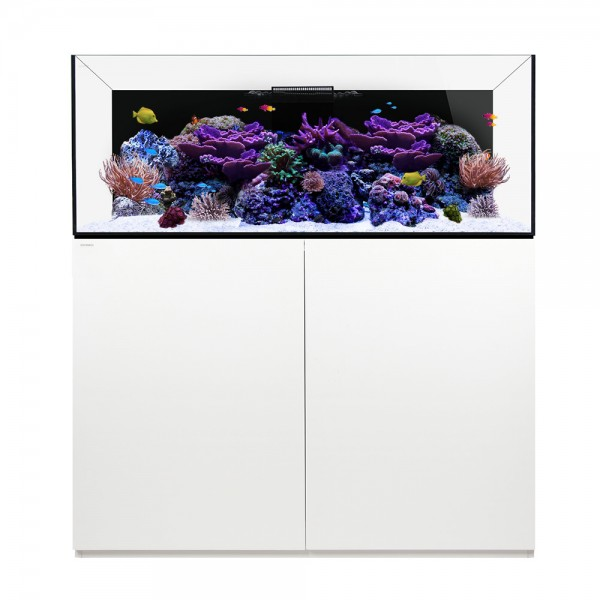 Waterbox Platinum Reef 130.4