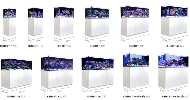 red sea reefer xxl 750 meerwasseraquarium online kaufen meerwasser hardware onlineshop. Black Bedroom Furniture Sets. Home Design Ideas
