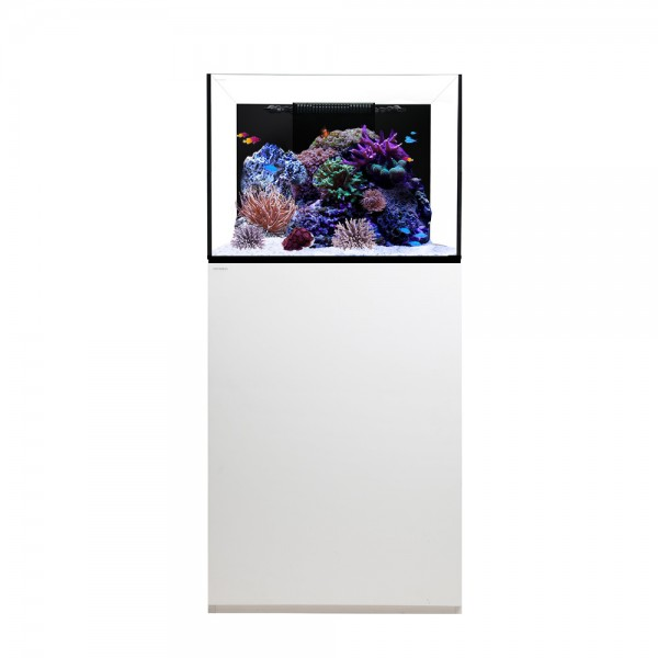 Waterbox Platinum Reef 70.2